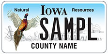 Natural Resources Pheasant License Plate