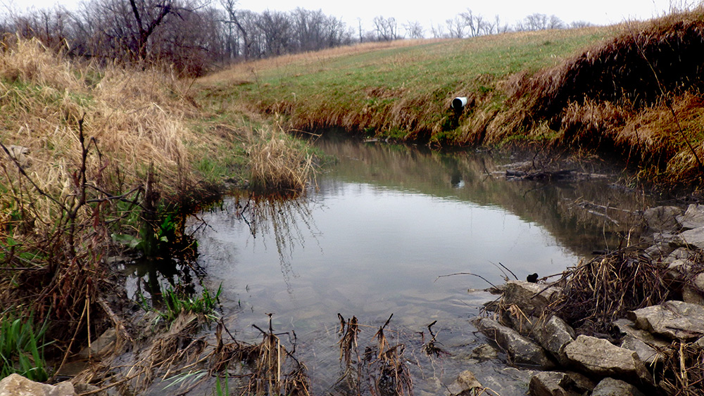 Improved stream channel with constructed rock riffle in the foreground (1 year Post-Construction).