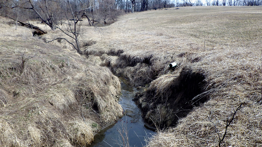 A stream with severe channel degradation and stream bank erosion (Pre-Construction).